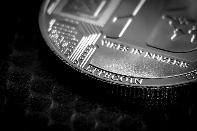 druh mince
