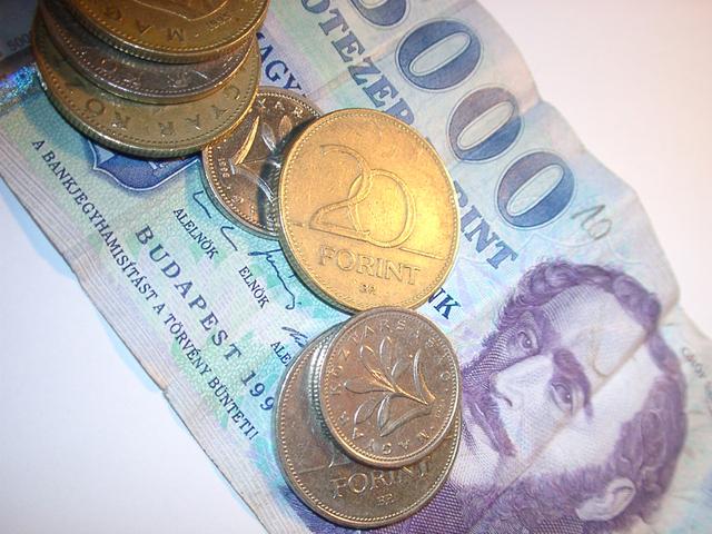 jedna velká bankovka a kupa mincí na ní